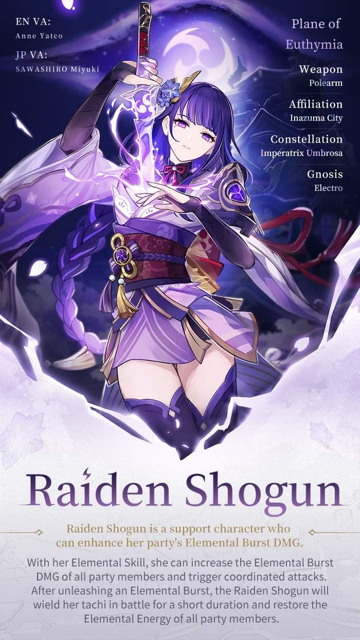 Raiden Introduction